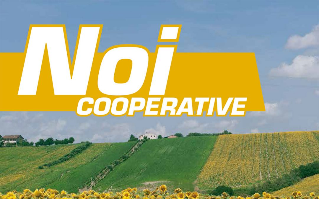Noi Cooperative – 2014 N.10