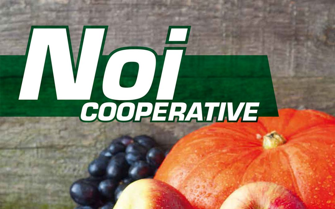 Noi Cooperative – 2014 N.11
