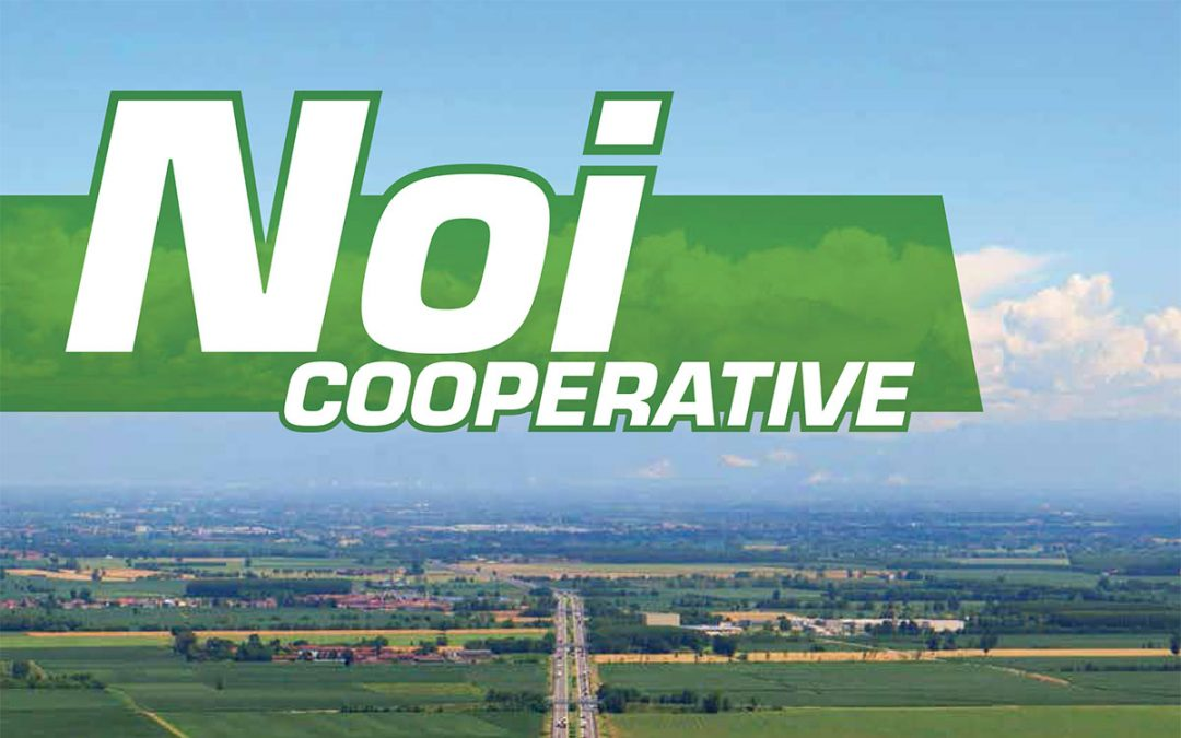 Noi Cooperative – 2014 N.9