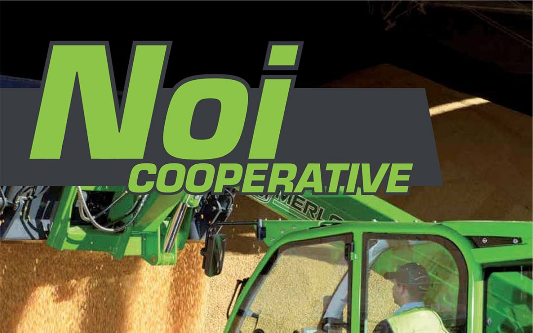 Noi Cooperative – 2015 N.15