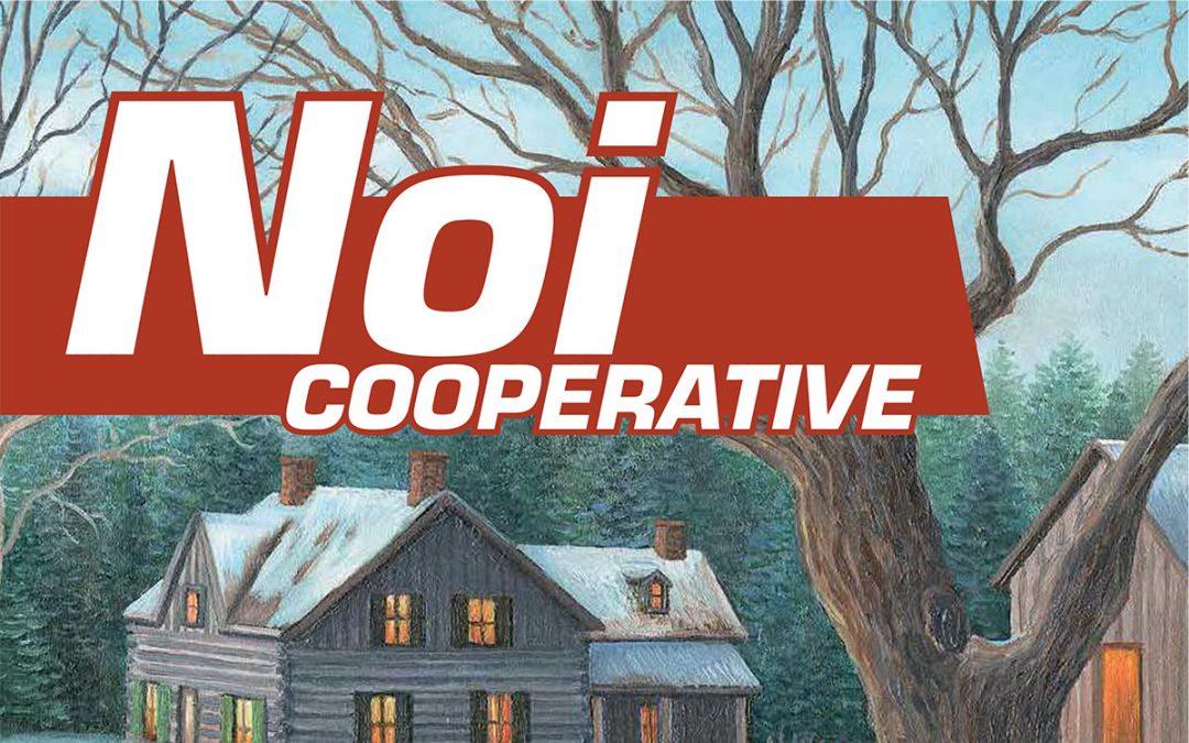 Noi Cooperative – 2015 N.16