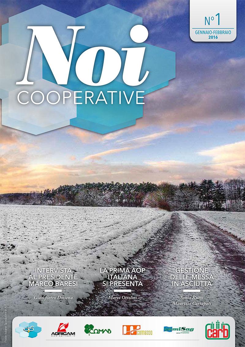 2016-1-noicop-1