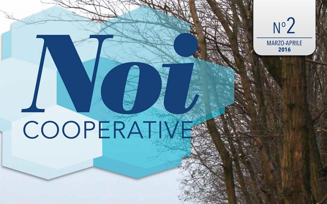 Noi Cooperative – 2016 N.2