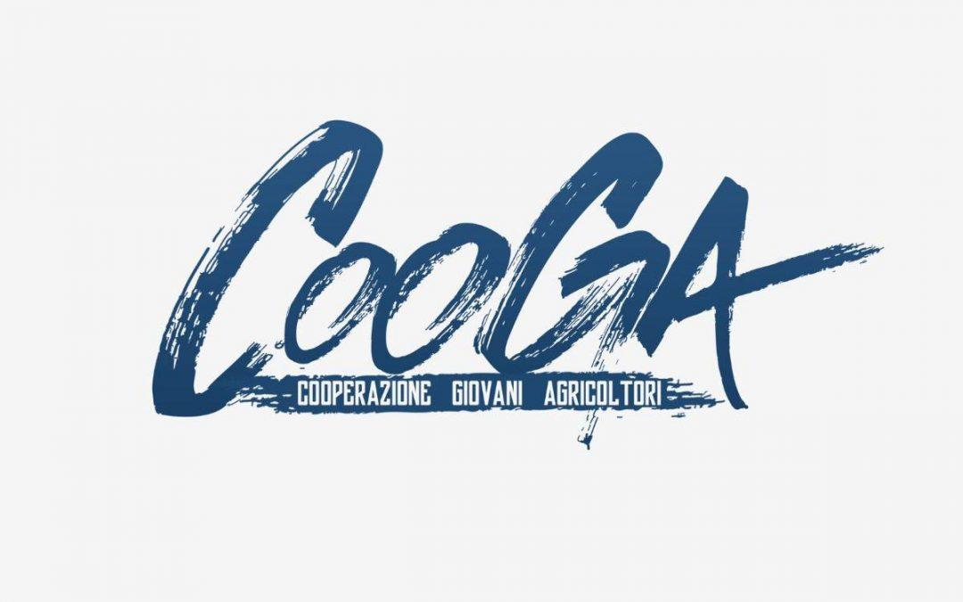 Perchè il Cooga ha fatto boom