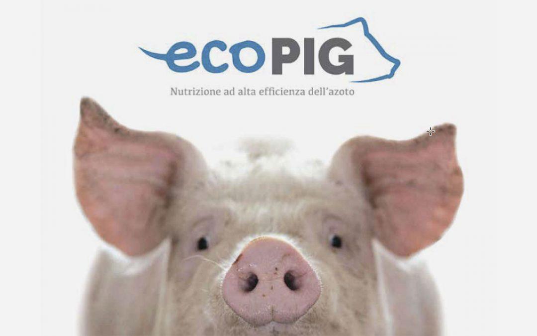 ECOPIG – L'efficienza dell'azoto